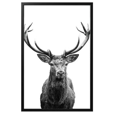 BJÖRKSTA Billede med ramme, Horn/sort, 118x78 cm
