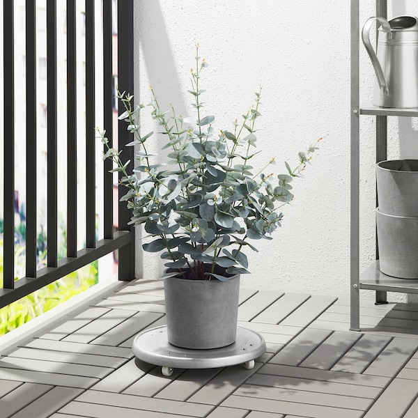 BOYSENBÄR Urtepotteskjuler, indendørs/udendørs lysegrå, 15 cm