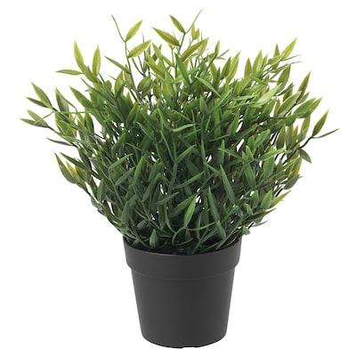 FEJKA Kunstig potteplante, indendørs/udendørs Stuebambus, 9 cm