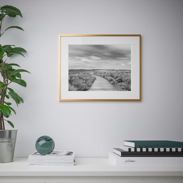 LOMVIKEN Ramme, guldfarvet, 40x50 cm