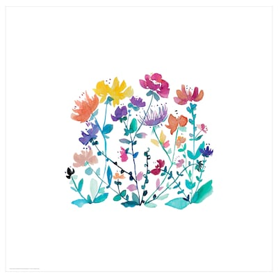 BILD Pòster, Flors silvestres, 50x50 cm