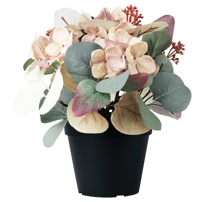 HÖSTPROMENAD Planta artificial, composició/eucaliptus verd, 12 cm
