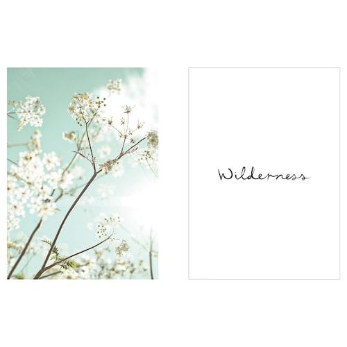 BILD poster Summer Wilderness 40 cm 50 cm 2 pack