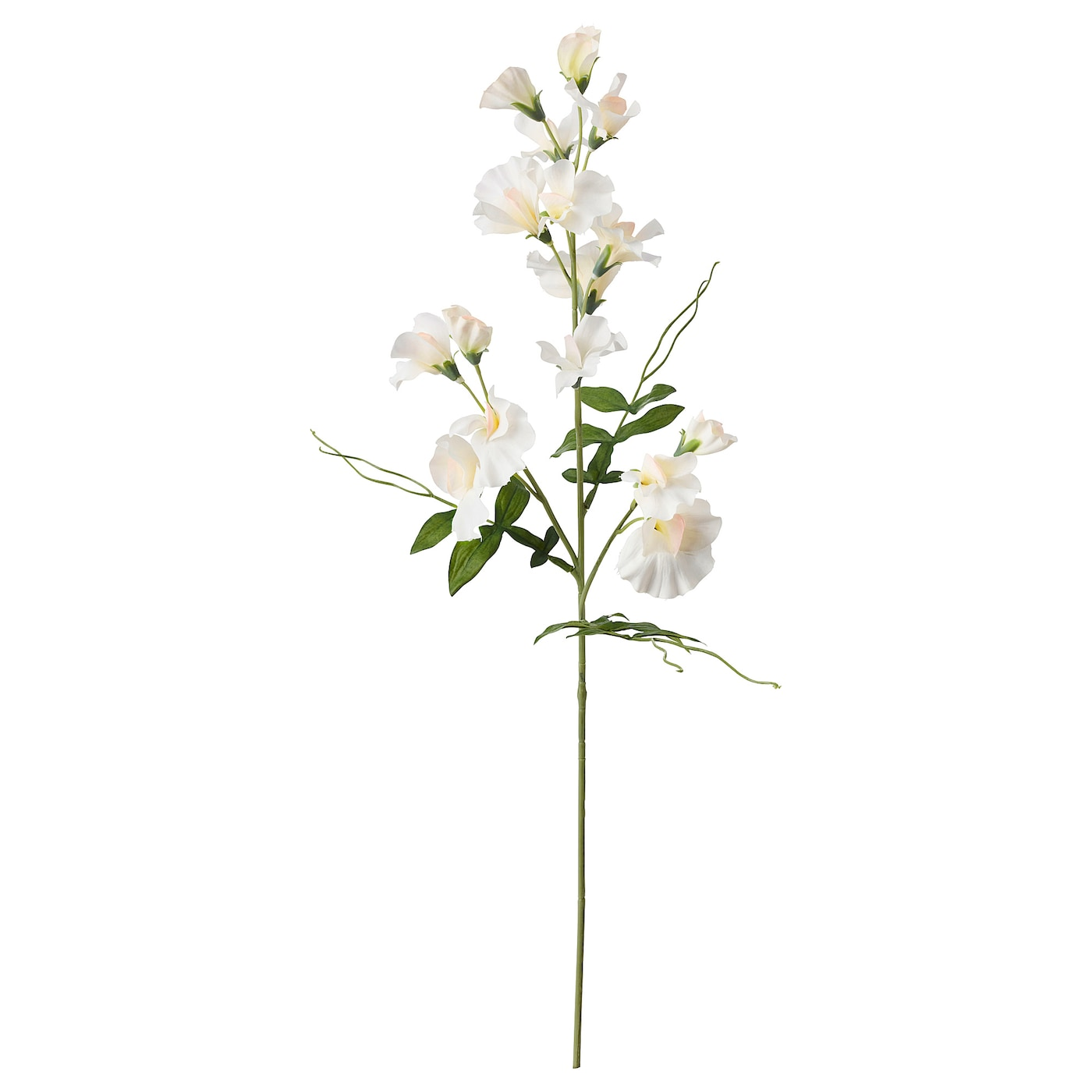 Smycka Artificial Flower Sweet Peawhite 60 Cm Ikea