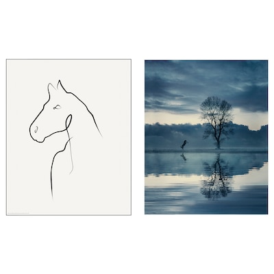 BILD Lámina, caballo, 40x50 cm