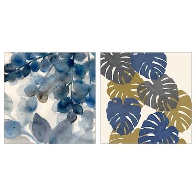 BILD Lámina, estudio de hojas, 50x50 cm