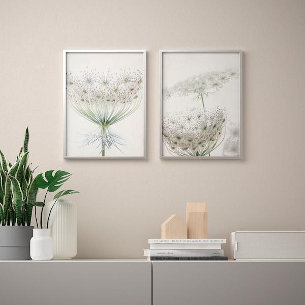 BILD Lámina, motivo florido, 30x40 cm