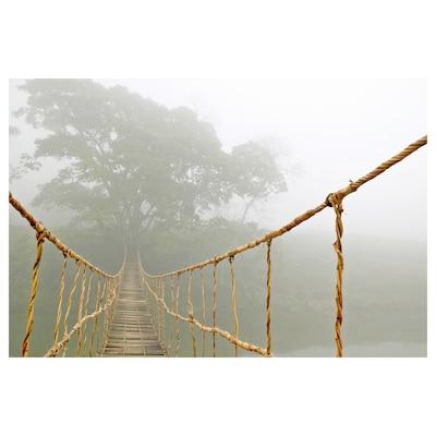 BILD Lámina, viaje por la jungla, 91x61 cm