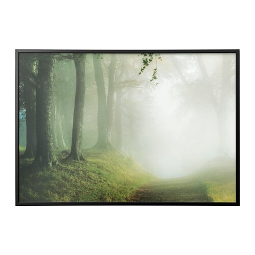 Imagen+marco, camino forestal, negro