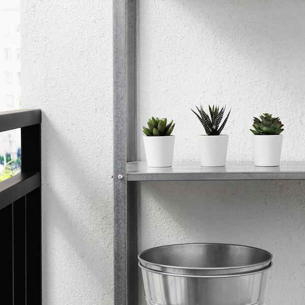 FEJKA Planta artificial, int/ext Suculenta, 6 cm 3 unidades