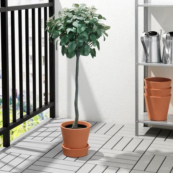 INGEFÄRA Maceta con plato, exterior/terracota, 15 cm