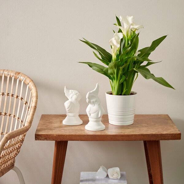 MUSKOT Macetero, blanco, 15 cm IKEA