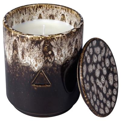 OSYNLIG Vela perfumada&portavela+tapa, Abedul sueco y enebro/marrón beige, 10 cm