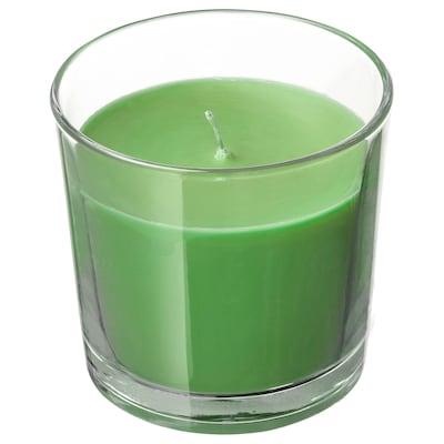 SINNLIG Vela aromática en vaso, manzanapera/verde, 7.5 cm