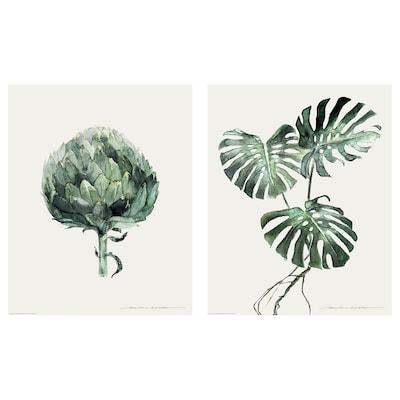 BILD Lámina, follas verdes, 40x50 cm