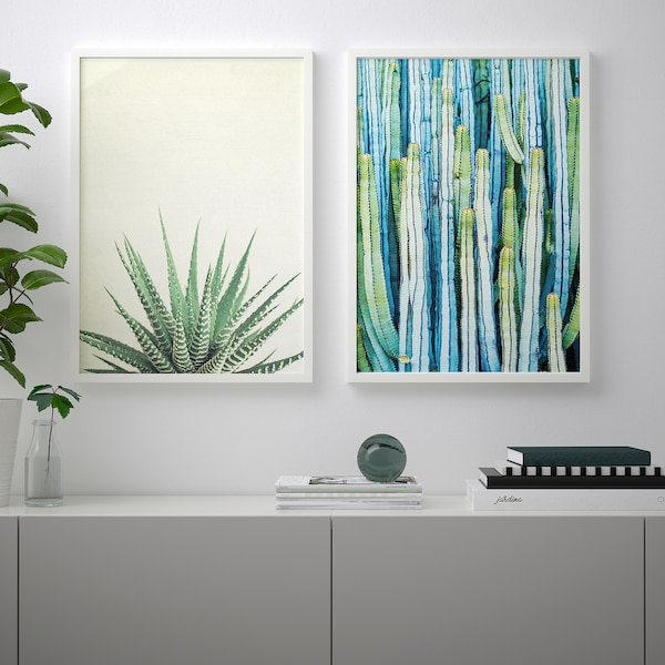 BILD Lámina, verdor, 50x70 cm