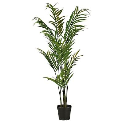 FEJKA Planta artificial, int/ext Corazón de palmeira, 23 cm