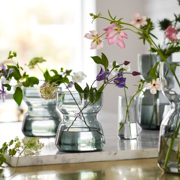A number of glass vases of different sizes, all of which hold plant cuttings in various colours and types.