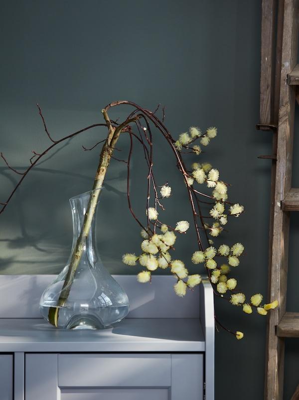 Une branche en fleurs bien découpée dans une carafe STORSINT en verre clair posée sur le dessus d'un buffet HAUGA gris.
