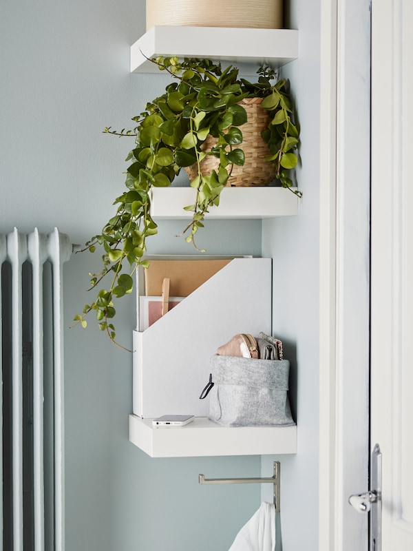 Three LACK white wall shelves with a green trailing plant in a basket, a white magazine file and various items on top.