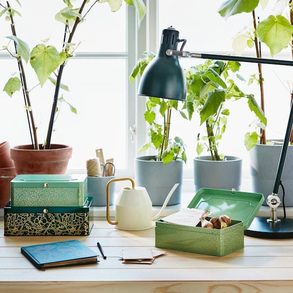 靠窗的桌子上放着各式小储物盒,后方是盆栽植物和一盏台灯。