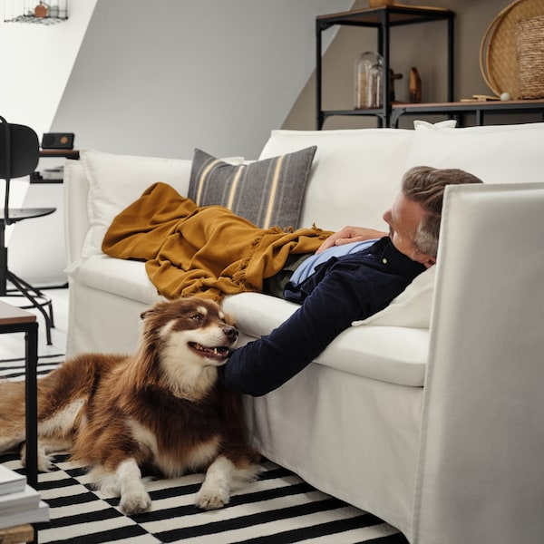 A man relaxing under a blanket on a BACKSÄLEN sofa stroking a dog lying on a striped mat on the floor.