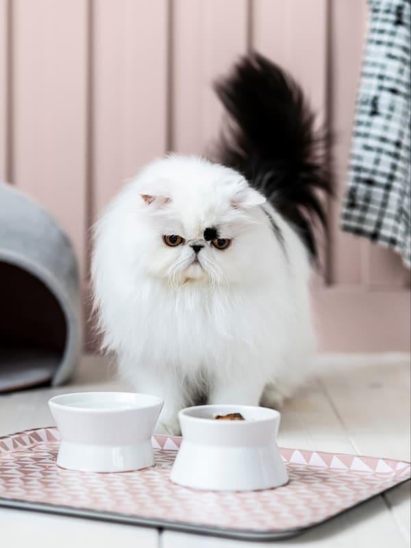 Лурвиг домик для кошки
