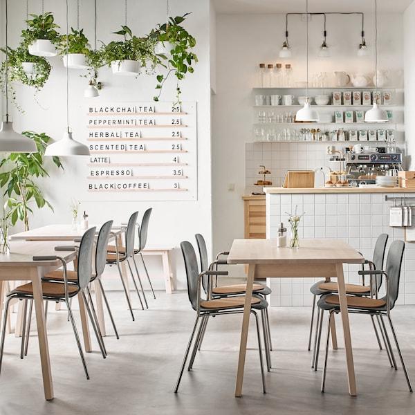 Ein Café mit vielen Tischen und Stühlen. Von der Decke hängen Pflanzen in Ampeln und an der Rückwand ist ein Tresen mit Bedienungsausstattung zu sehen.