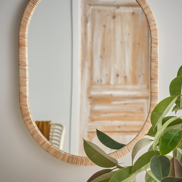 A mirror on a white wall, beside a green plant, with the reflection of a wooden door in the mirror.