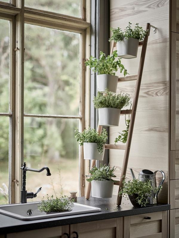 Piedistallo per piante SATSUMAS in bambù con cinque portavasi ed erbe aromatiche all'interno di portavasi bianchi, contro la parete di una cucina vicino al lavello e a una finestra.