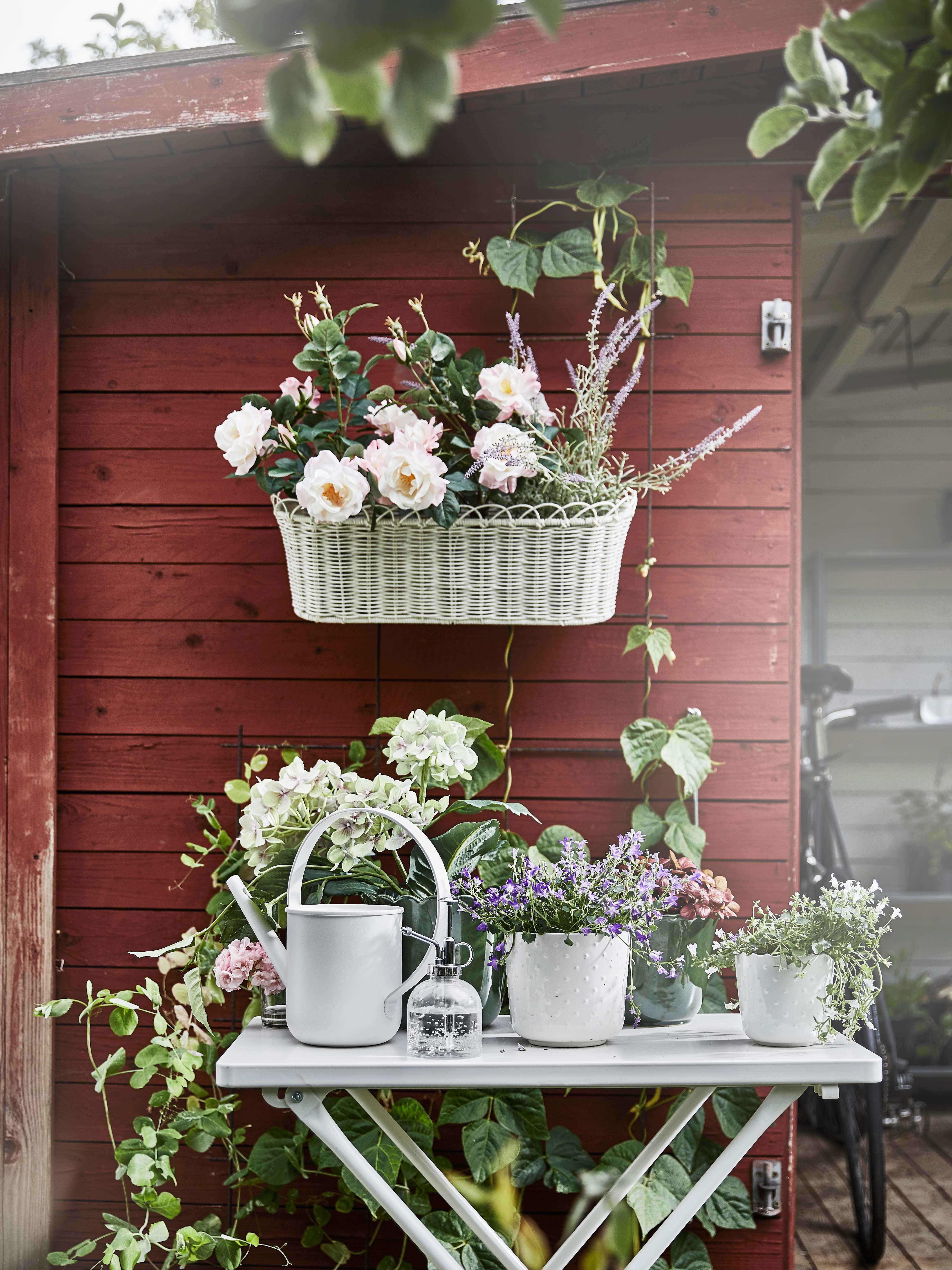 Outdoor area with a flower box on a shed's wall, white watering can, mist dispenser, plant pots, household plants and flowers