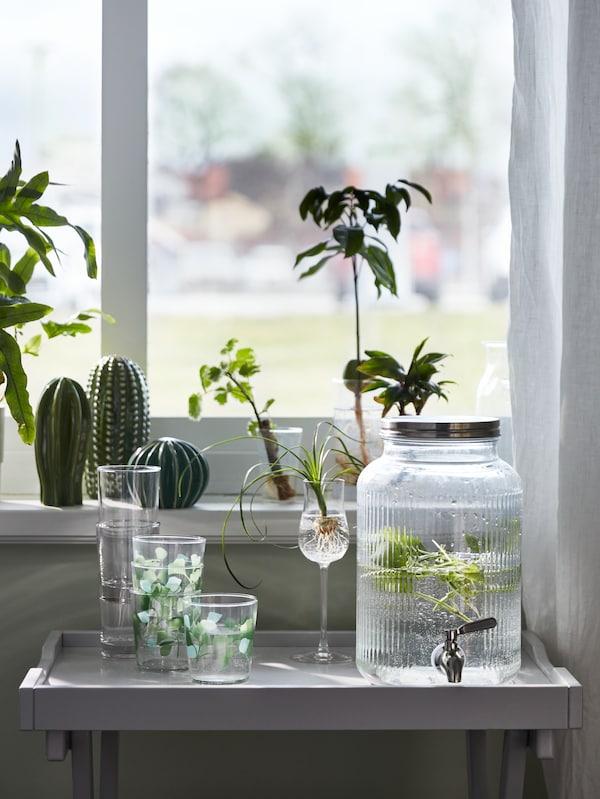 Egy ablakot látunk, amelyet növények és egy SJÄLSLIGT dekorációs készlet kereteznek. Az ablak előtt egy tálca-asztal áll, rajta egy VARDAGEN üvegedény csappal, valamint néhány STILENLIG pohár kapott helyet.