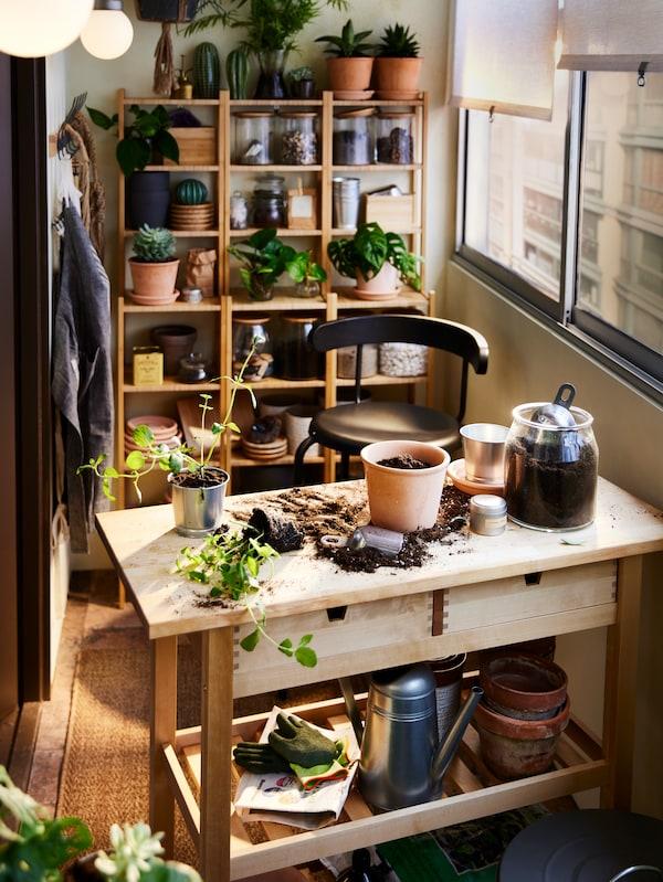 وحدات رفوف RÅGRUND من الخيزران مع نباتات وتخزين،خلف عربة مطبخ من خشب البتولا مع كرسي مرتفع YNGVAR فحمي.