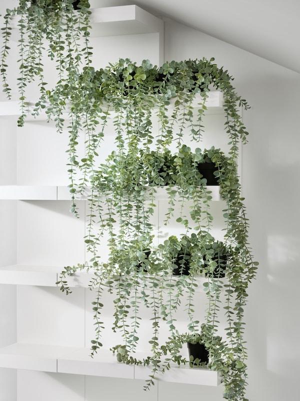 ชั้นวางห้าชั้นติดผนัง FEJKA/เฟคก้า แต่ละชั้นมีต้นยูคาลิปตัสประดิษฐ์ FEJKA/เฟคก้า แขวนอยู่ เหมือนน้ำตกใบไม้
