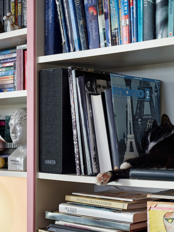 A bookcase full of books and other items, with a WiFi speaker placed on one of the shelves, and a cat on the shelf too.