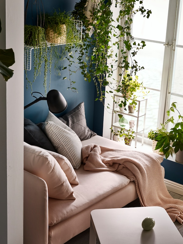 Chaise lounge by a sunlit window. Cushions, throw and reading lamp. Plants on the sill, hanging, and on wall shelves.