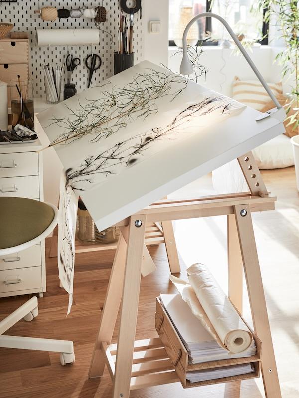 Piante essiccate su un foglio di carta, appoggiate su una scrivania composta da un piano tavolo bianco inclinato e cavalletti in legno. Lampada bianca fissata con un morsetto.