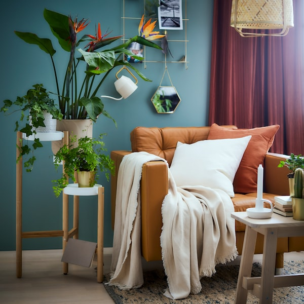 A corner of a living room with a tan leather sofa and various plants.