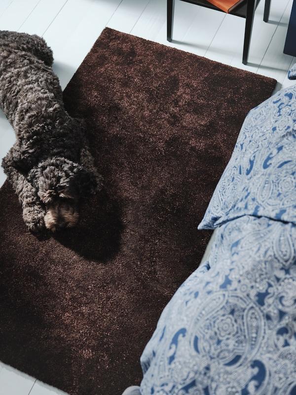 Alfombra alta STOENSE de cor marrón escuro sobre a que descansa un can, ao carón dunha cama con roupa de cama con estampado de caxemira.