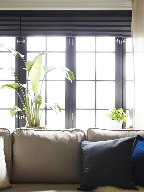 En lys beige sovesofa står foran fire vinduer med beige gardiner og lystette gardiner i mørkegrått.