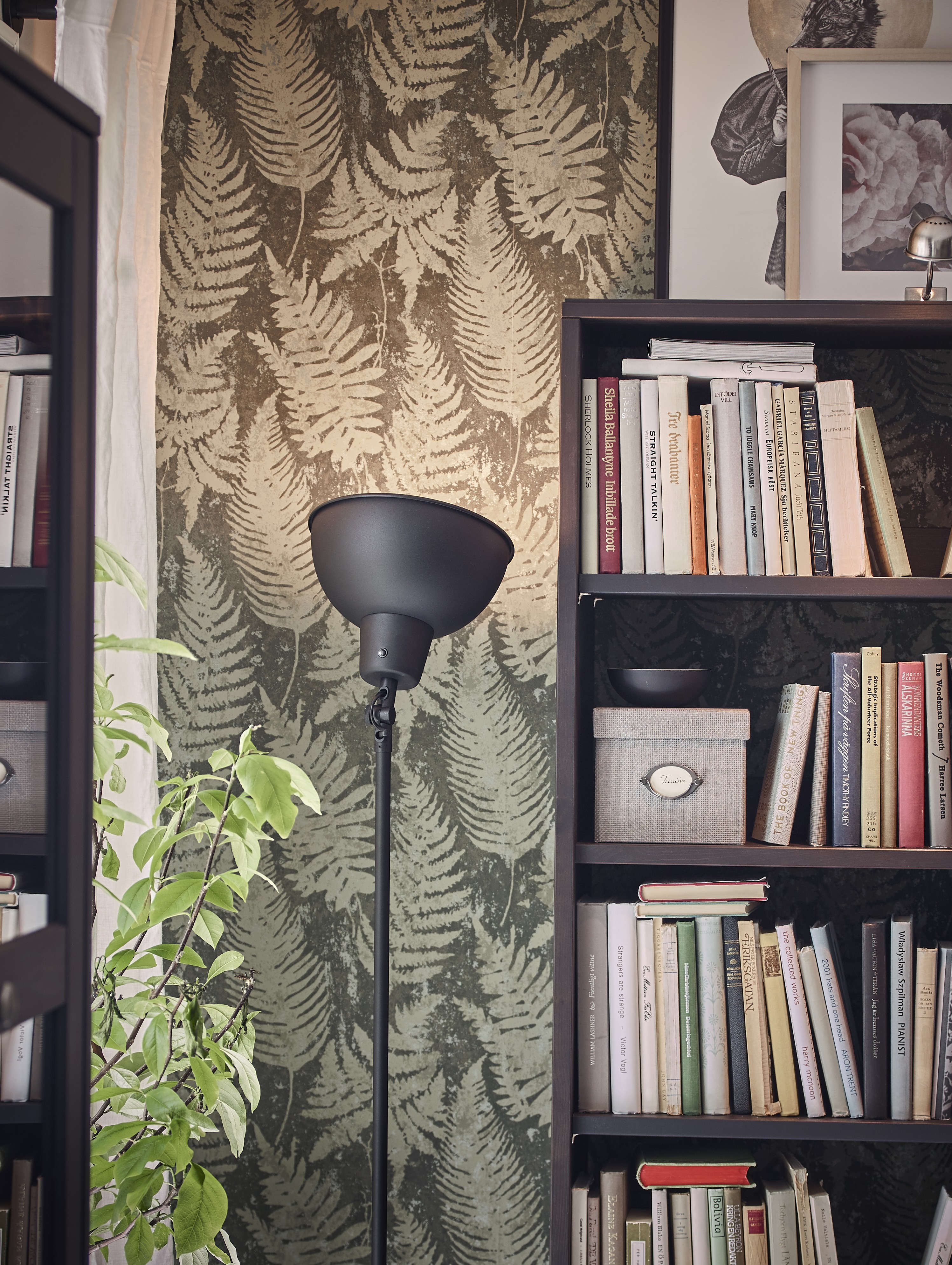 A black SKURUP floor uplighter shines on a leafy wallpapered corner by a tall bookcase with open-back shelves.