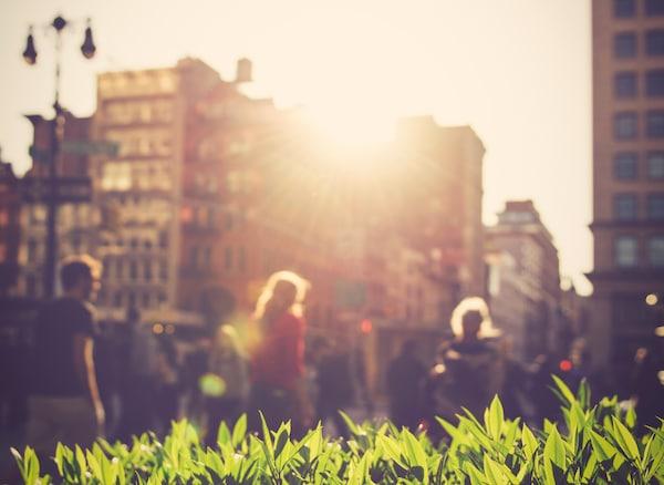 Cez budovy presvitá slnko na jasnozelenú rastlinu. Vpozadí kráčajú ľudia.