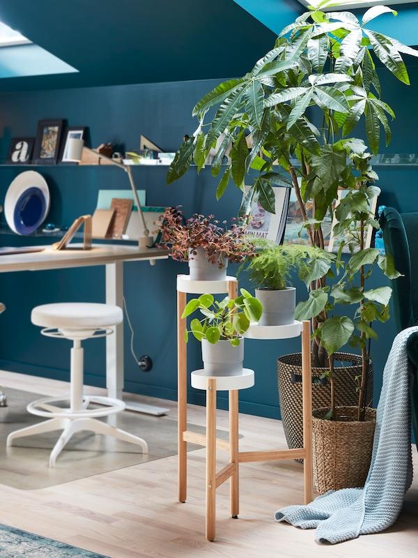 Bambuinen kukkapöytä jossa on kolme hyllyä, viherkasveja harmaissa ruukuissa, vihreä nojatuoli ja valkoinen pöytä.