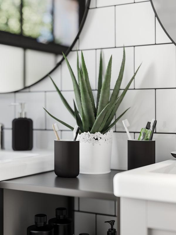 Två mörkgrå tandborstställ och en aloe vera-växt står på en stomme mellan två tvättställ i grått och vitt.