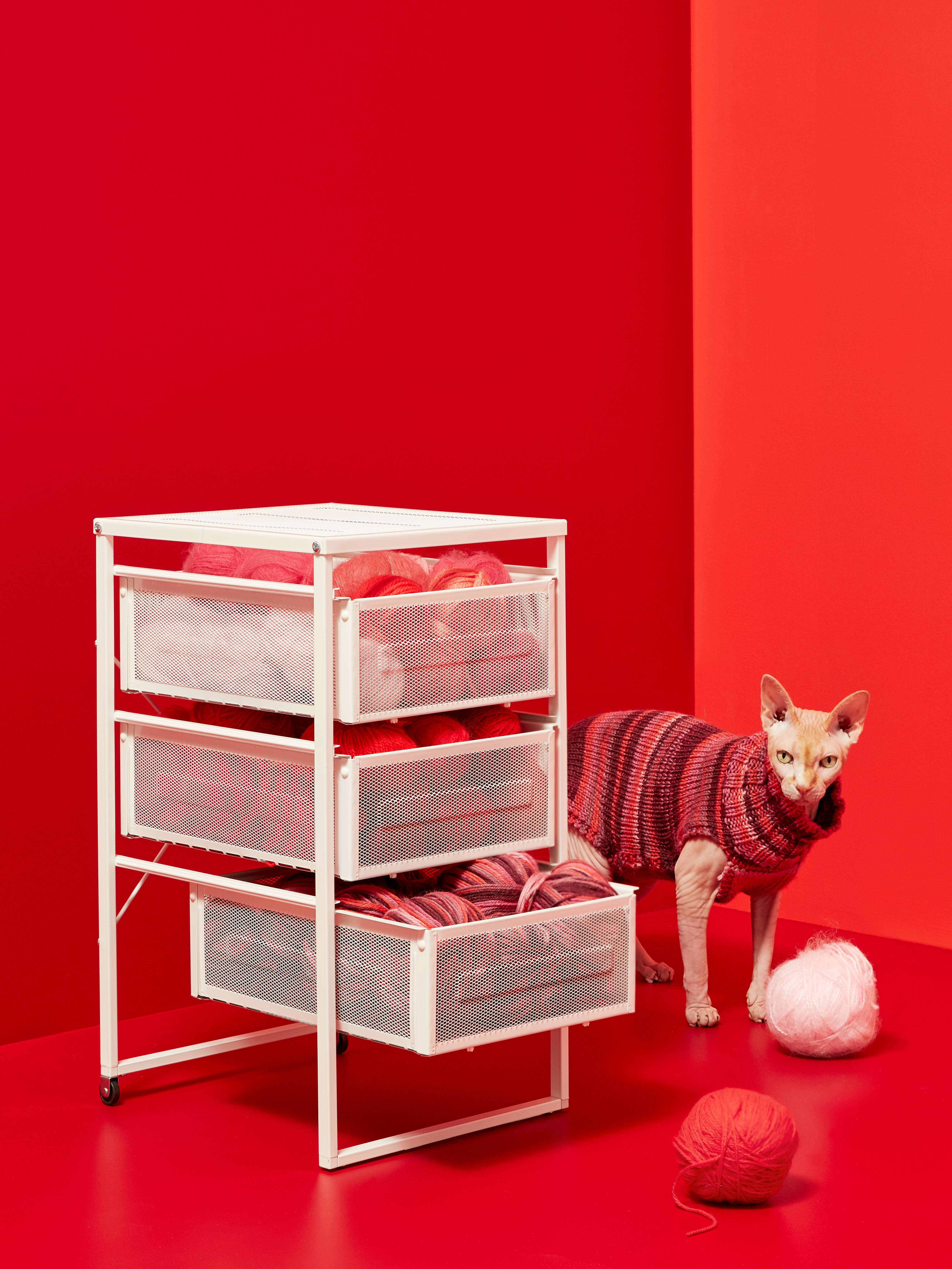 Modern room painted in red with drawer unit on two wheels with three semi-transparent plastic drawers with yarn balls inside next to cat.