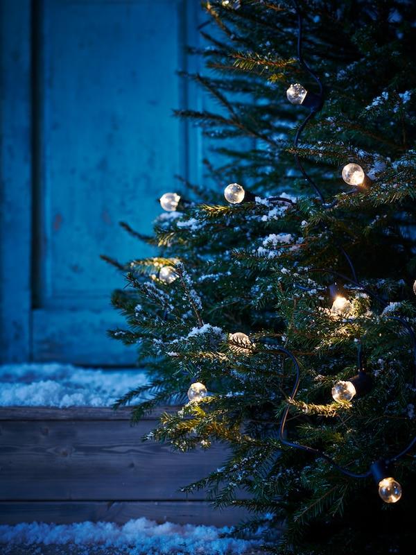 Sneklædt landskab ved nattetid. Et grantræ er pyntet med en tændt UTSUND batteridrevet LED-lyskæde.