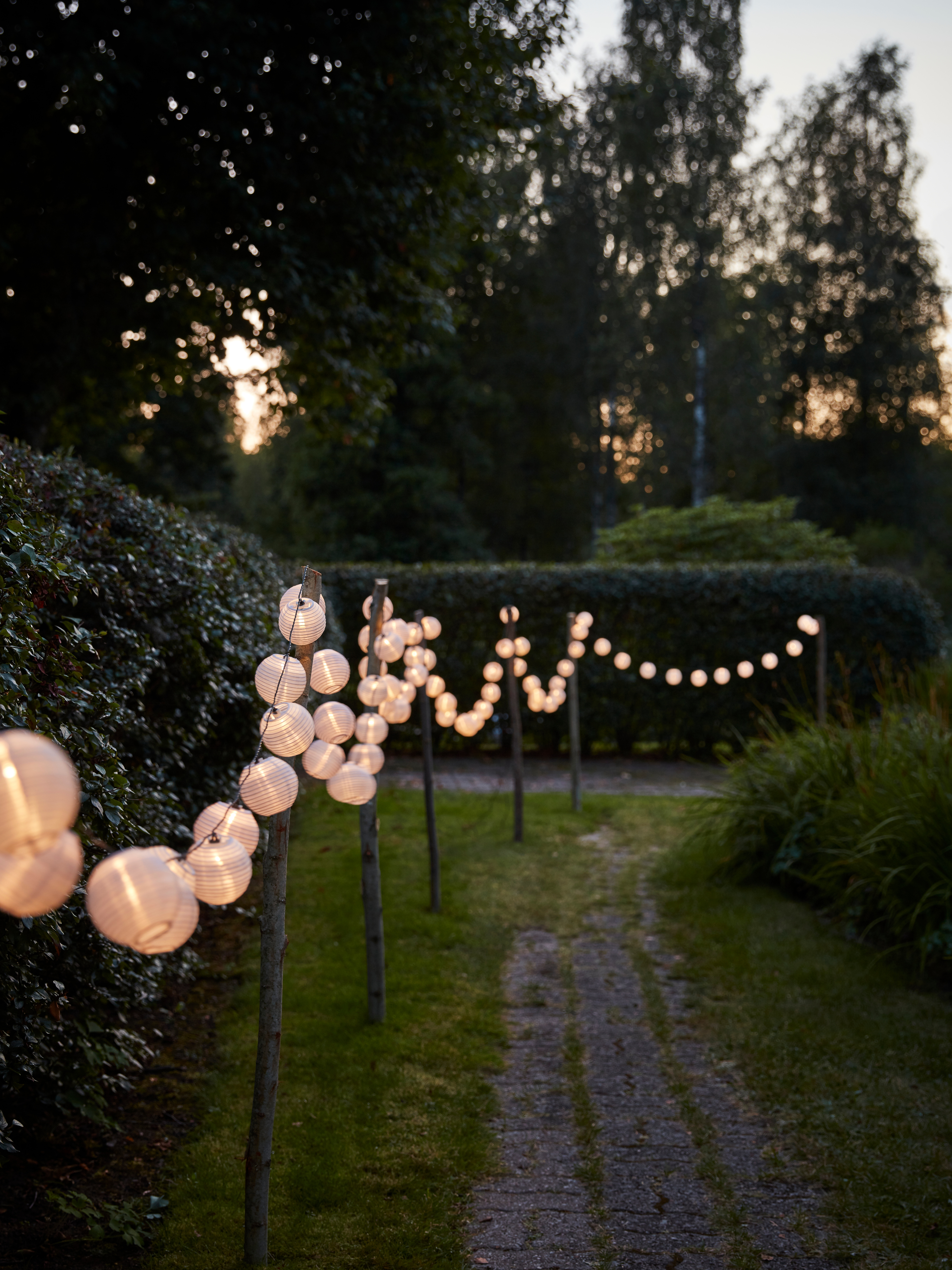 As the sun sets, SOLARVET LED solar-powered lighting chains hang on poles lining a path, brightening a garden.