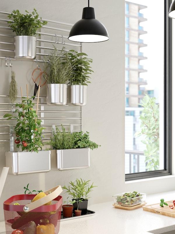 Seinällä on KUNGSFORS-seinäristikko jossa on erilaisia yrttejä KUNGSFORS-purkeissa. Pöydällä on ruokaa RISATORP-korissa sekä IKEA 365+ - lasisessa säilytysrasiassa.