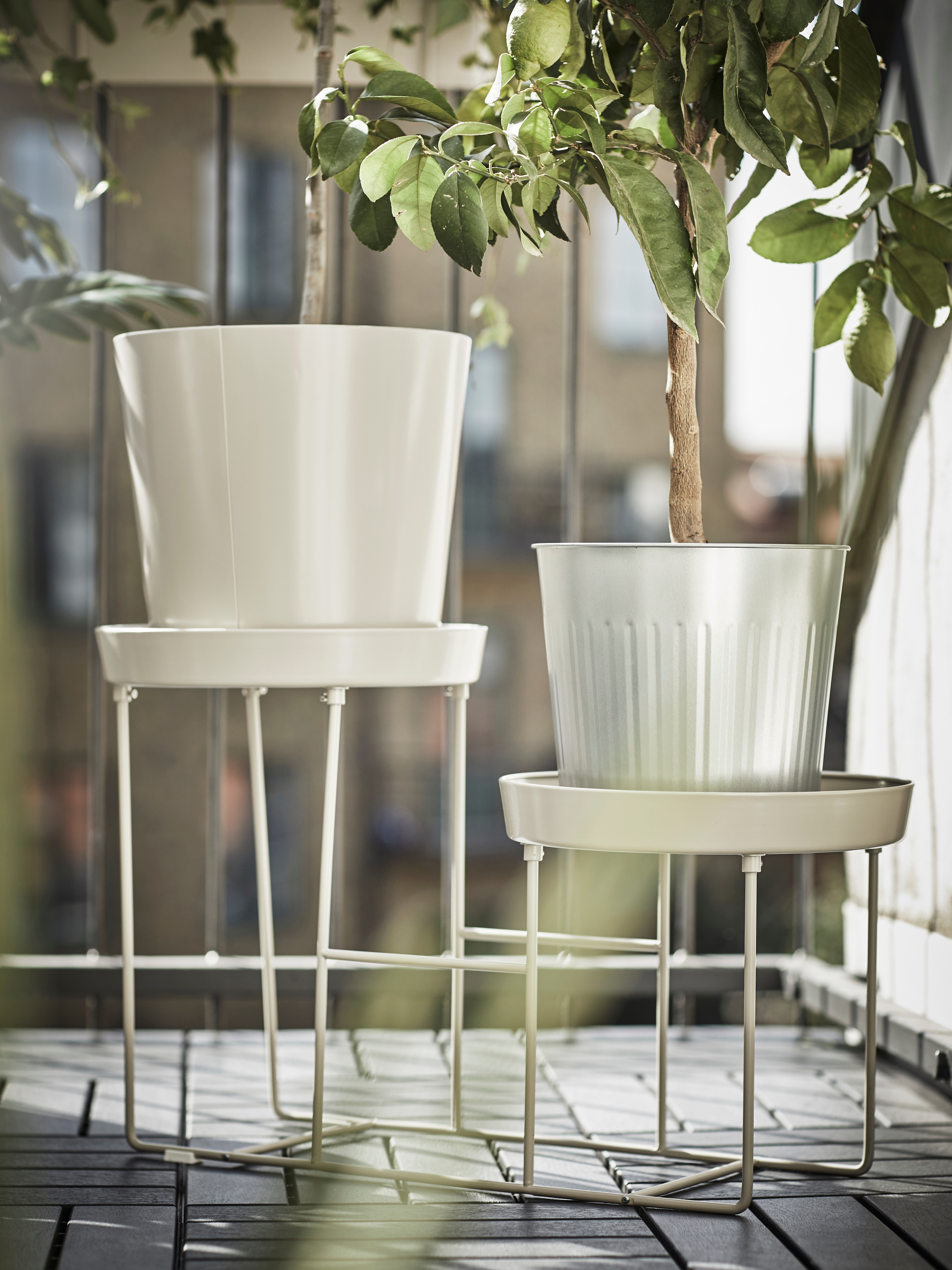 Corner of outdoor space with white plant stand made of galvanised steel, green household plants inside two white pots.