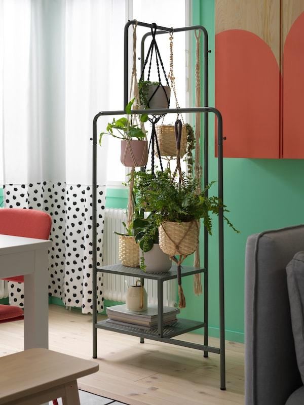 Une salle à manger avec des rideaux blancs à pois noirs et un portant gris-vert sur lequel sont suspendues de nombreuses plantes vertes dans des cache-pots.